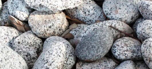 Salt and Pepper Colorado River Rock